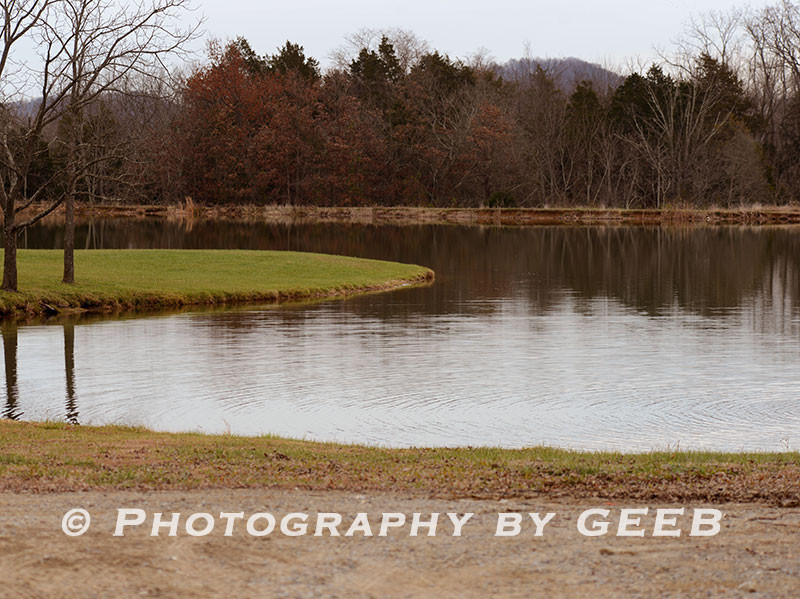 The water series pond.
